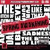 Spring Awakening - 2 CDs of Vocal Tracks & Backing Tracks